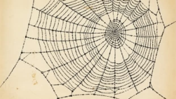 Charlotte's Web, pen and ink with pencil and wash, circa 1952 ($10,000 to $15,000). (Photo courtesy Swann Auction Gallery)