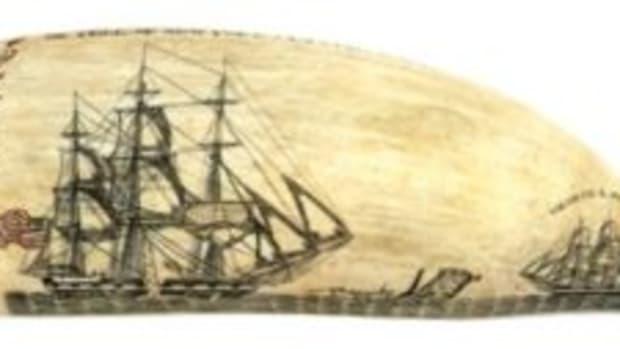 Burdett scrimshaw tooth