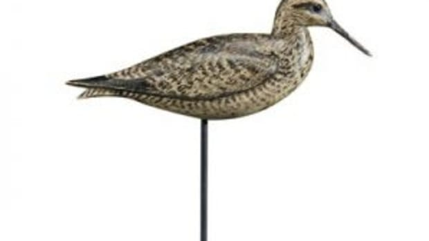 Yellowlegs decoy
