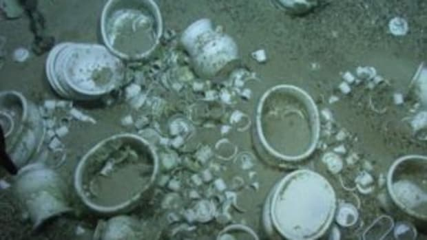 White ironstone china at the bottom of the sea, in place following a 19th century shipwreck. (Submitted photo)