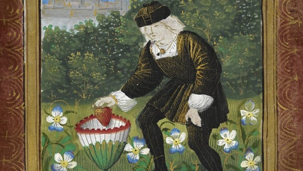 "Miniature of Pierre Sala dropping ""his"" heart in a marguerite for his beloved Marguerite."