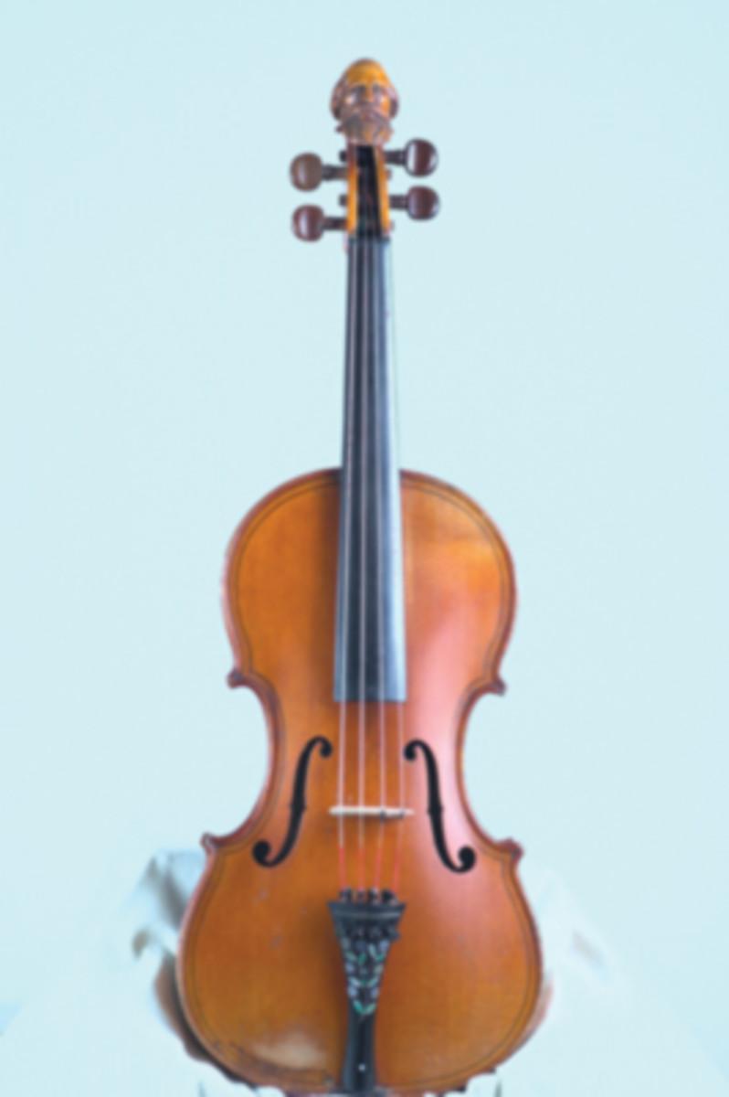 head fiddle