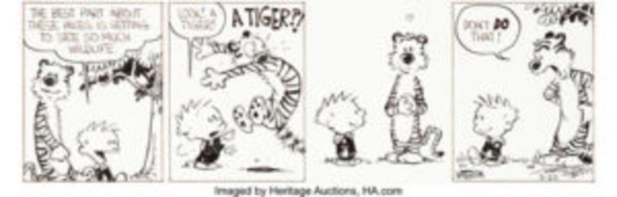 Calvin and Hobbes art