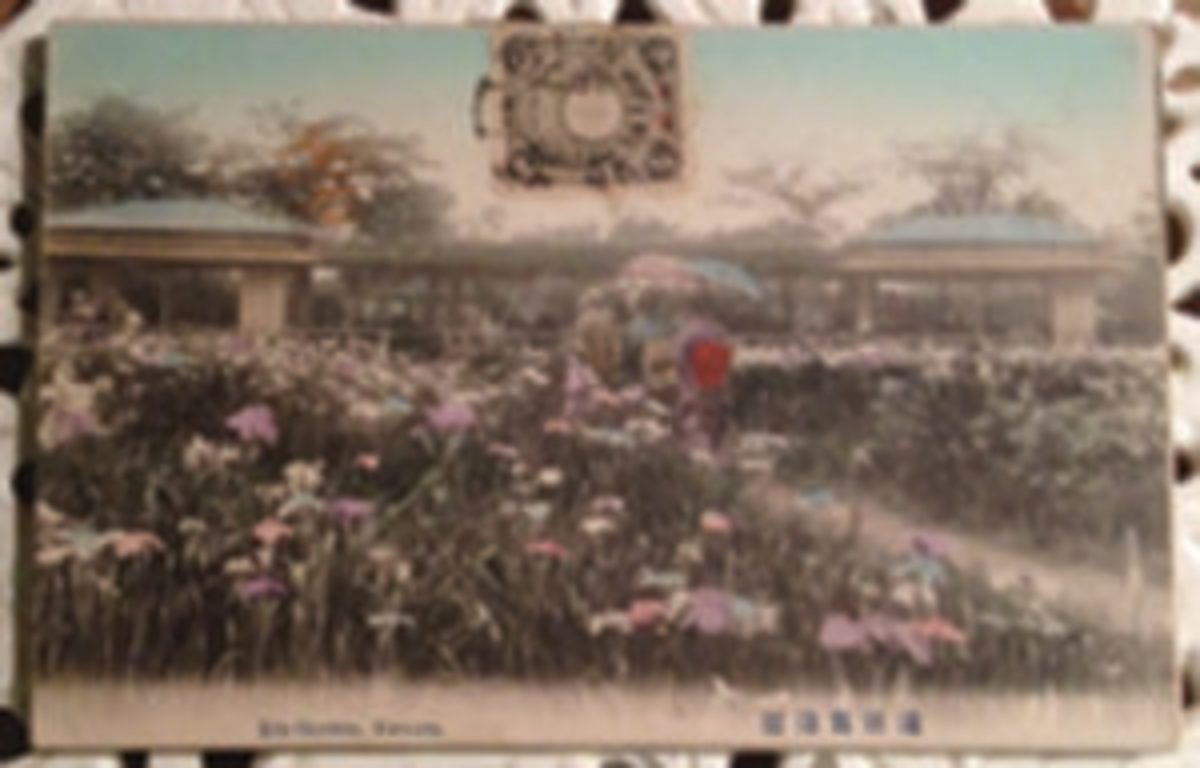 Tinted Asian postcard with stamp
