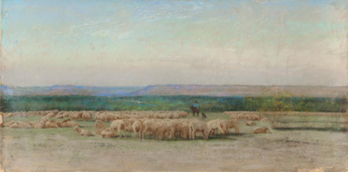 Sheepherder's Camp