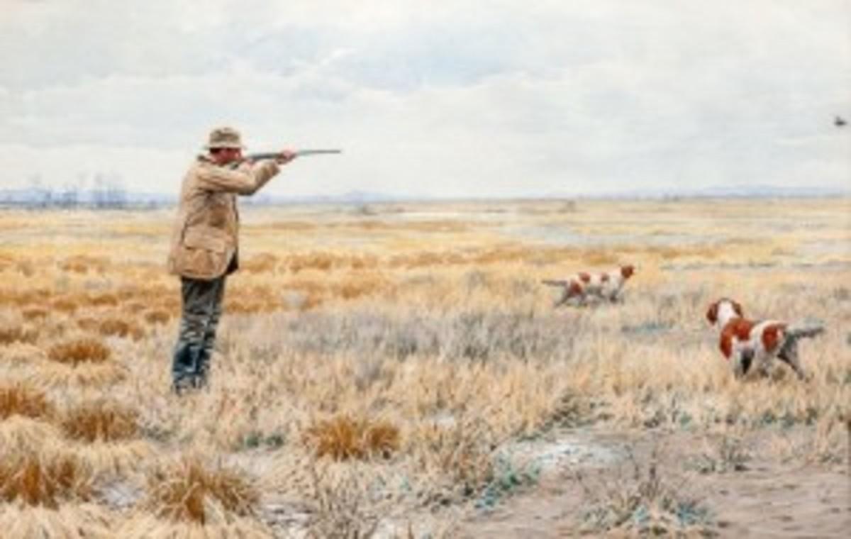 """English Snipe"" painting"