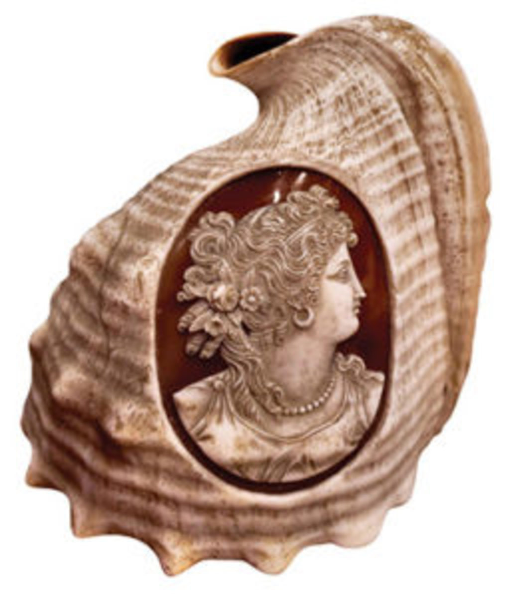 The shells most prized for carving cameos are those with naturally occurring layers of contrasting color. Shown here is a cameo carved into a kameynye shell, from the collection of author and historian Carol Greene. Courtesy of Dr. Anthony Cavo