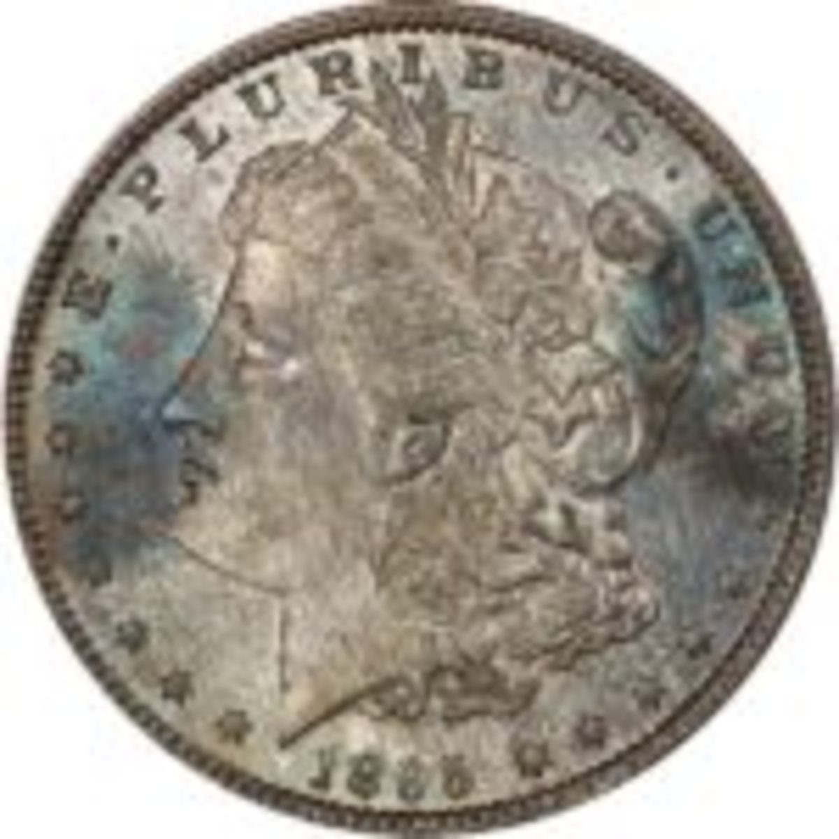 1895 Morgan Dollar minted in New Orleans, Louisiana