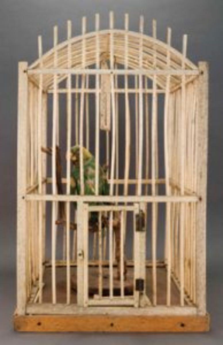 whalebone birdcage