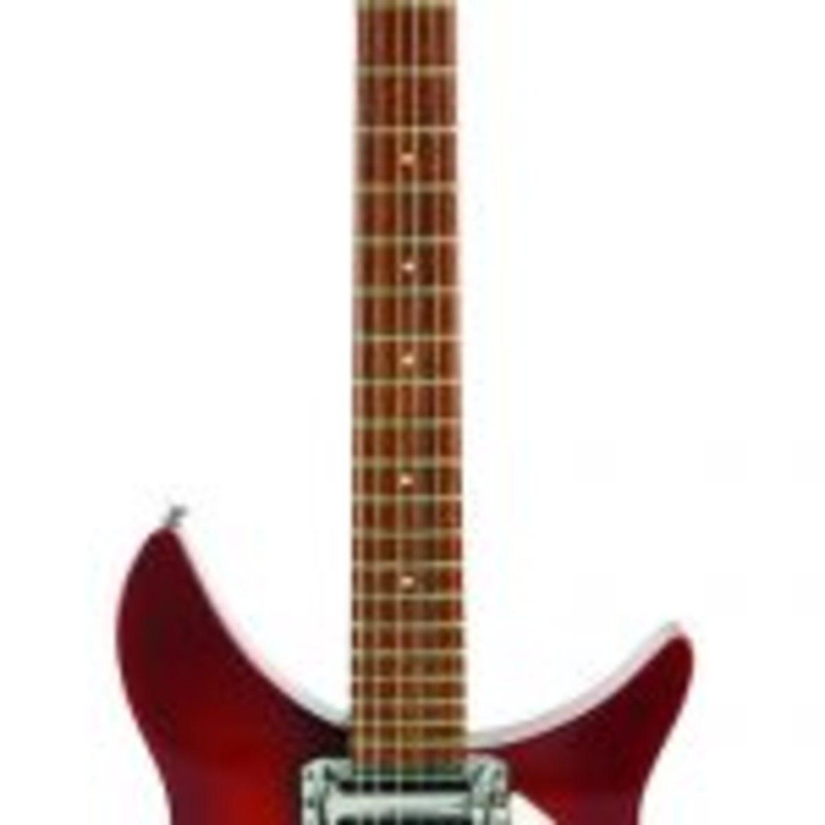 """The Beatle Backer"" guitar"