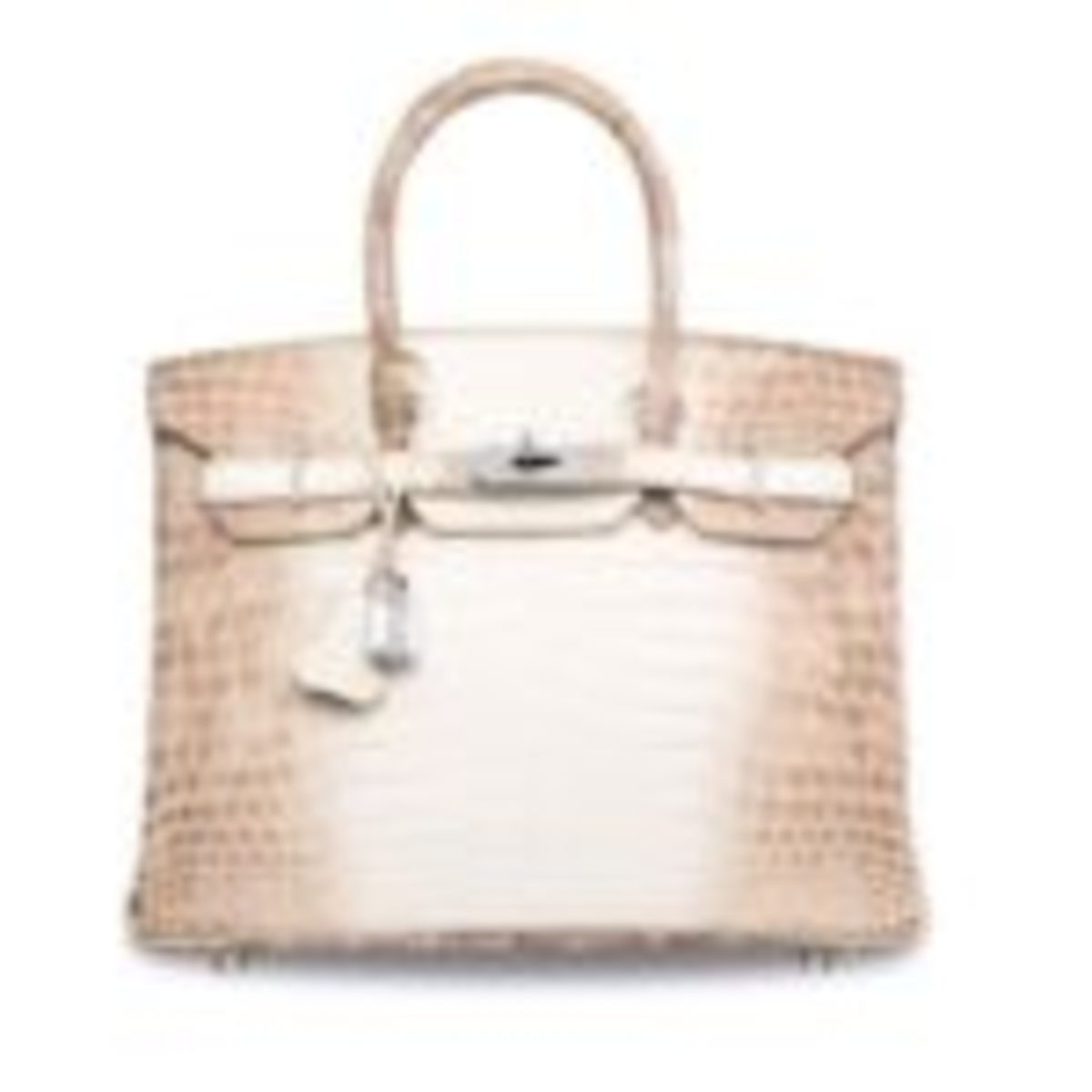 The matte white Himalaya Niloticus Crocodile Diamond bag by Hermes Birkin. It is the current luxury handbag world record holder sold for £208,250.