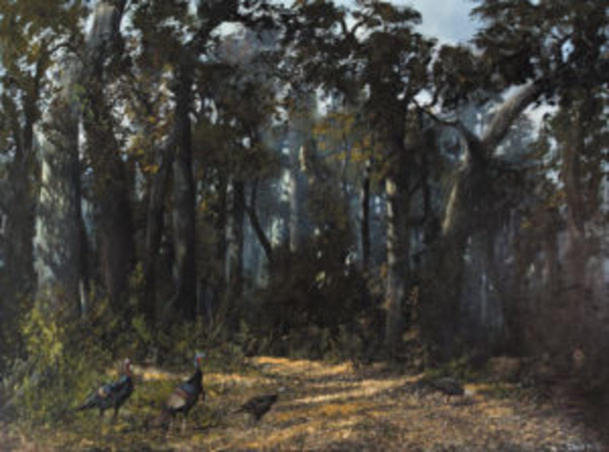 Wild Turkey oil painting