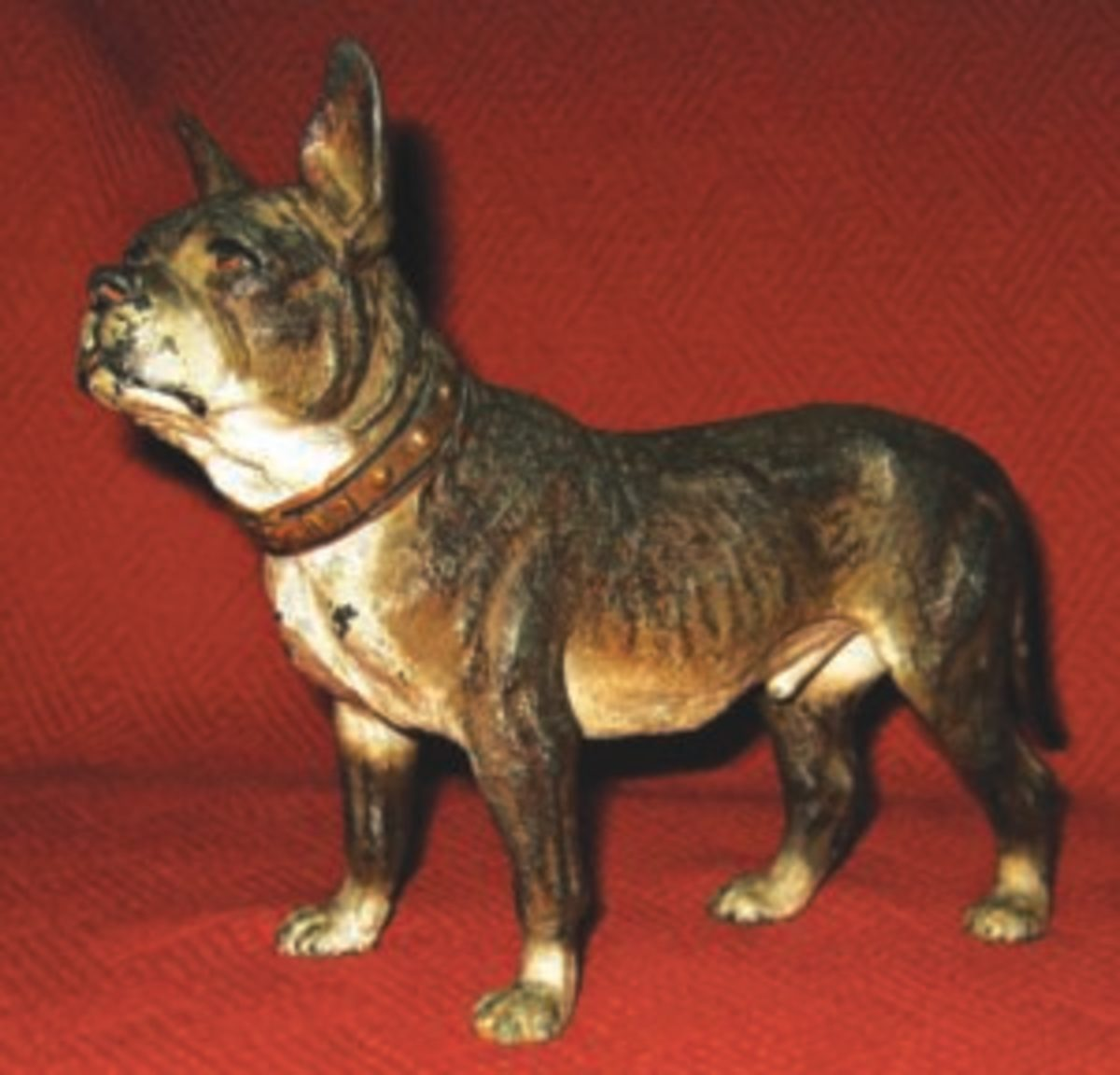This French Bulldog is another dog in Scott Thompson's collection. Image courtesy of Scott Thompson