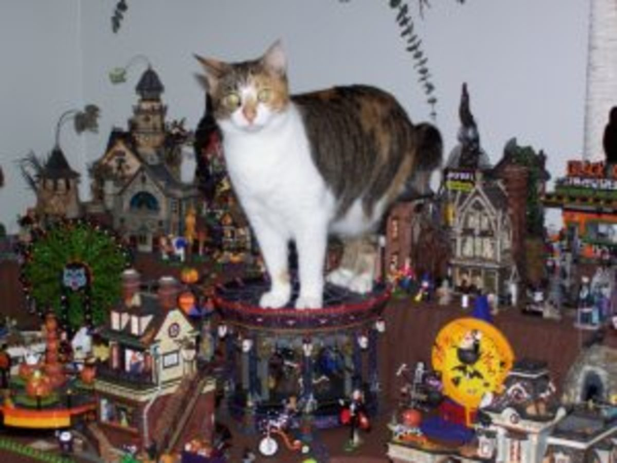 Dept 56 makes Halloween pieces, too. Collector Nancy Mattson's cat, Lacey, is a fan of the Halloween Merry-Go-Round. Image courtesy of Nancy Mattson
