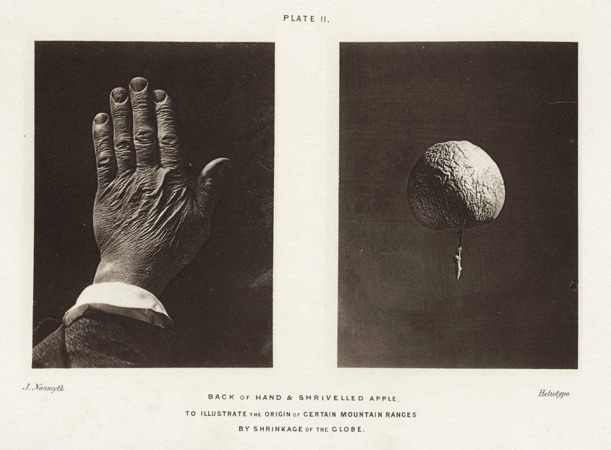Back of hand and shriveled apple - to illustrate the origin of certain mountain ranges by shrinkage of the globe.