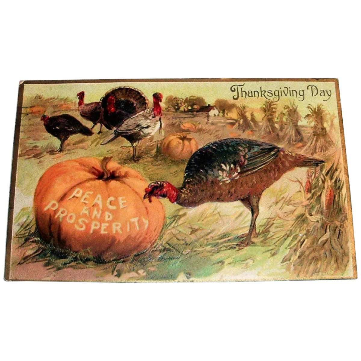 If you collect Thanksgiving postcards, consider scattering a few around your dinner table to add some festive fun. This one is 110 years old and has turkeys feasting on the pumpkins in the field; $13.Courtesy of The Antique Chasers: rubylane.com/shop/theantiquechasers