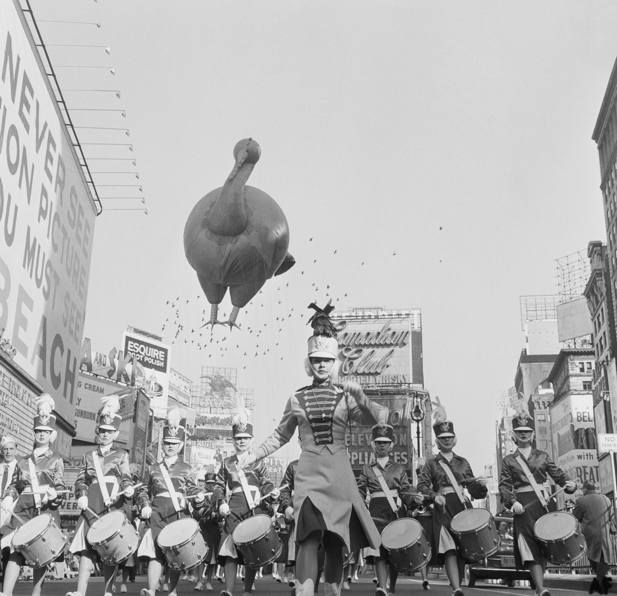 A helium-filled Turkey on it's way through Times Square in 1959, accompanied by a marching band.