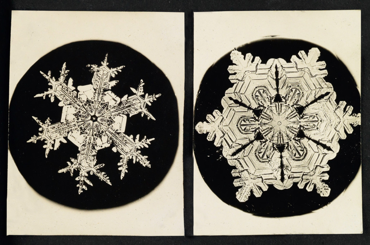 "Two of a grouping of 25 snowflake images that sold at Swann for $52,000 in 2016. Gold-chloride toned microphotographs from glass plate negatives, each approximately 4"" x 3""."
