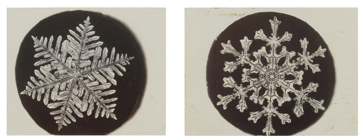 Two of a group of 40 photomicrographs of Bentley's snowflakes, circa 1885-1923, that sold at Sotheby's for $32,200.