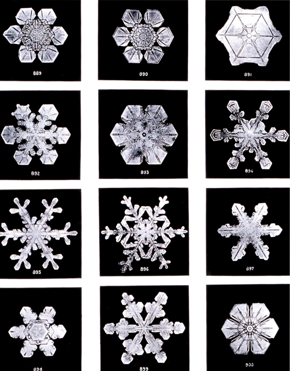 Various snowflake images captured by Bentley.