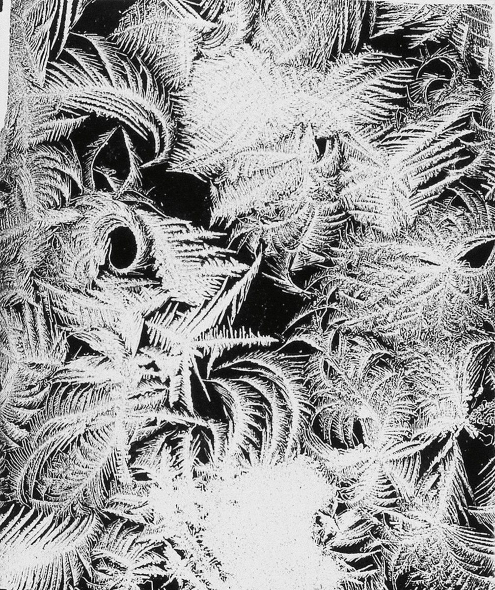 One of a group of four Bentley photographs of ice crystals, silver print microphotographs from glass plate negatives, 1903-1920, that sold at Swann for $13,125.