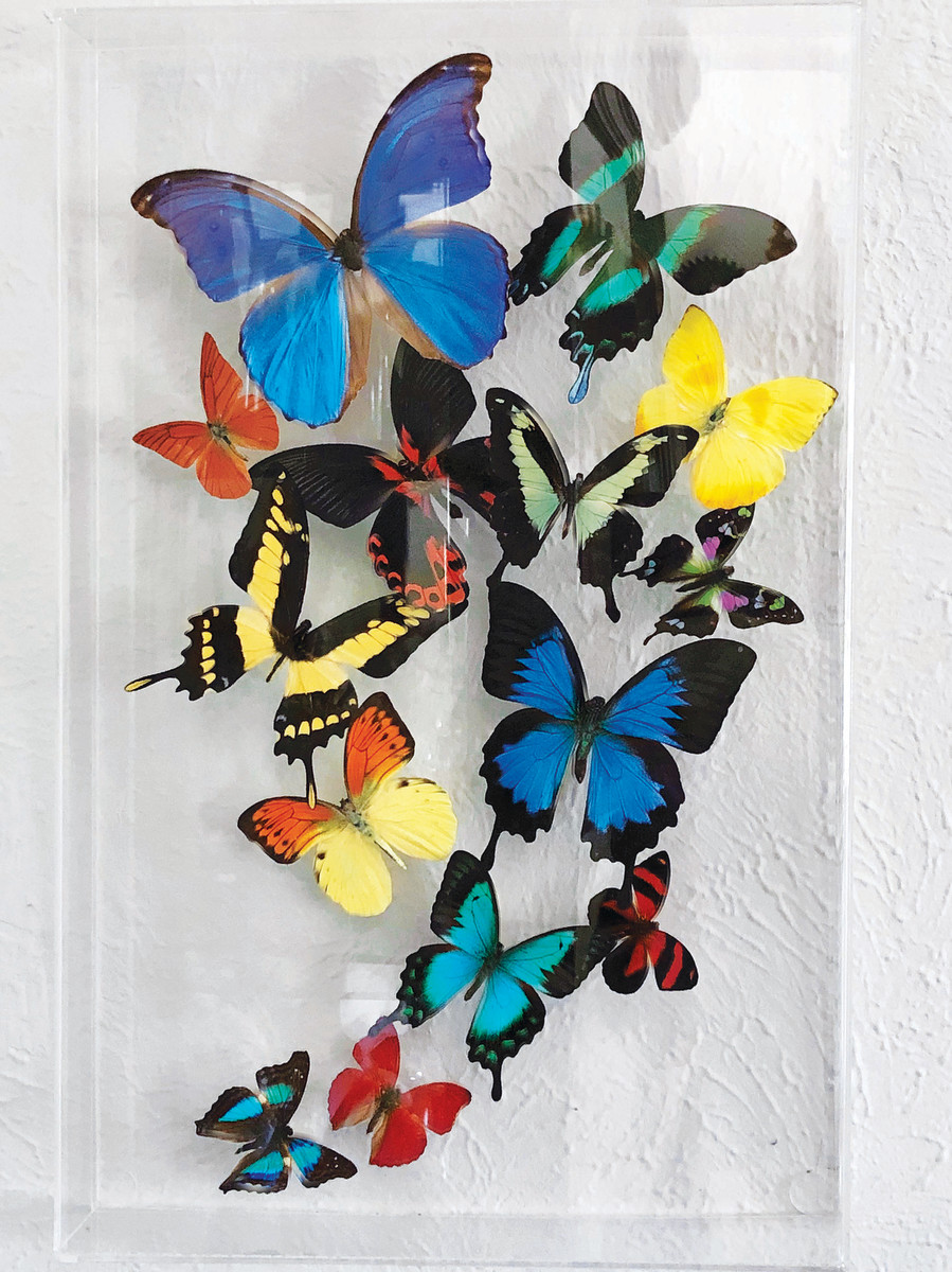 People donate the most amazing things. Once I was last in the checkout line about five minutes before a thrift store closed. A staffer walked past with stock for the morning and pulled out this gorgeous arrangement of butterflies in a Lucite shadowbox. Price? $95! I had to make a snap decision. Even though it ate my entire thrifting budget for the rest of the week, I don't regret the buy.