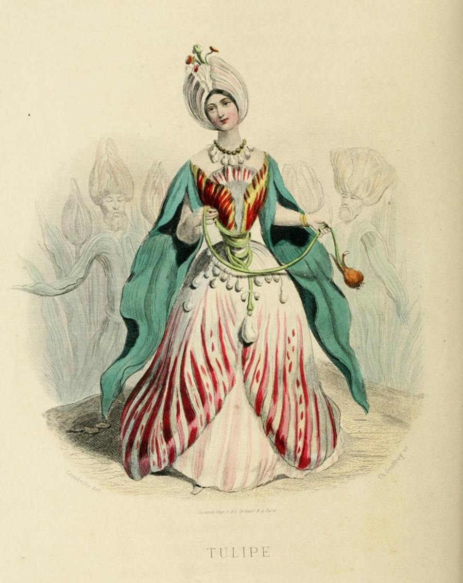 Tulipe, from Flowers Personified, 1847.