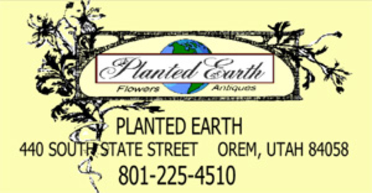 planted-earth