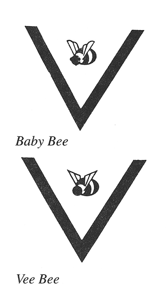 BEE_2 copy
