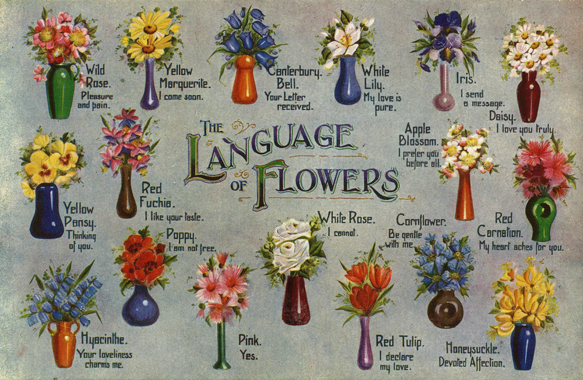 Illustrated postcard, printed in England/The Regent Publishing Co Ltd.
