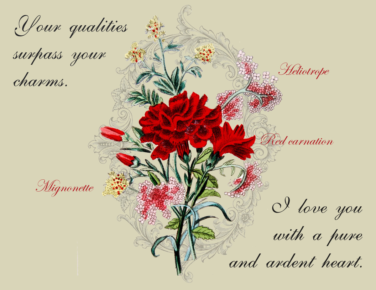 A bouquet of mignonette, heliotrope and red carnation told the recipient that their charms  were no match for their qualities and that the sender loved them with a pure heart.  From The Language of Flowers, 1834.
